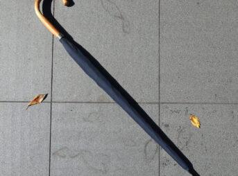 ラムダのレインドロップレクタス長傘(外観)